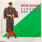 Rick James - Forever And A Day