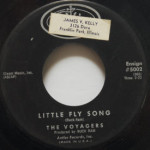 Voyagers - Little Fly Song/Sock Hop
