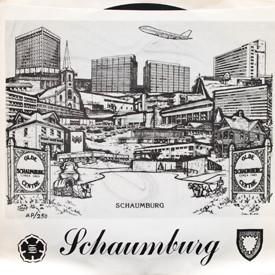 Barbara Tracy and No Limit - Schaumburg