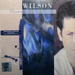 Brian Wilson - Brian Wilson Single