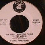 Wayne Armstrong - Most Beautiful Thing In The World