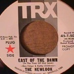 Newlook - East Side of the Dawn/ What Did You Take Me For
