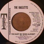 Raeletts - You Must be Doing Alright