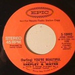Shepley & Wayne - You're Beautiful