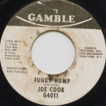 Joe Cook - Funky Hump/America Don't Turn Your Back