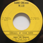 Terry Lee Jenkins - Chicago, My Home Town