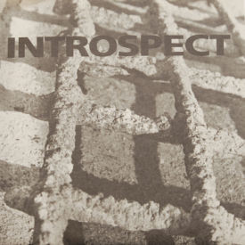 Introspect - Stationary Trust/Her Monument