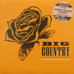 Big Country - Where The Rose Is Sown