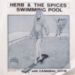Herb & The Spices - Swimming Pool