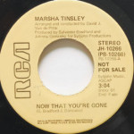 Marsha Tinsley - Now That You're Gone