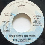 Younguns - Wait Till The Time Is Right/Tear Down The Wall
