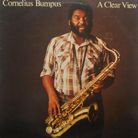 Cornelius Bumpus - A Clear View