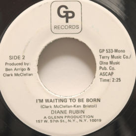 Diane Rubin - I'm Waiting To Be Born