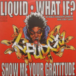 L-Fudge - Liquid/What If?/Show Me Your Gratitude