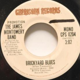 James Montgomery Band - Brickyard Blues