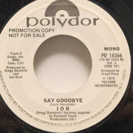 IOB - Say Goodbye