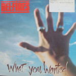 Bel-Fires - What You Wanted