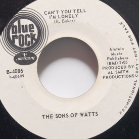 Sons Of Watts - When You Love, You're Loved Too