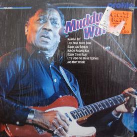Muddy Waters - Profile