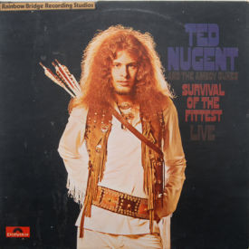 Ted Nugent And The Amboy Dukes - Survival Of The Fittest/Marriage On The Rocks