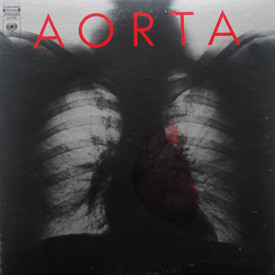 Aorta - Aorta