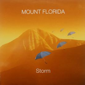Mount Florida - Storm