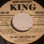 Blue Valley Boys - Memory Waltz/ She Ain't Been Spoken for