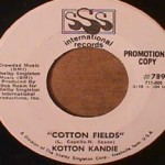 Kotton Kandie - Cotton Fields