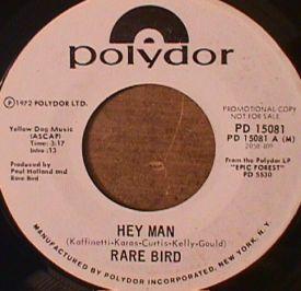 Rare Bird - Hey Man