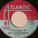 Neal Rosengarden - What Can I Be