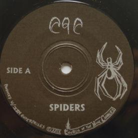 C9C - Spiders/Night Of All Nights